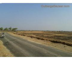plots @ Rs. 84/- p/ sqft. at Vaitheeshwar nagar, near udnoor glb
