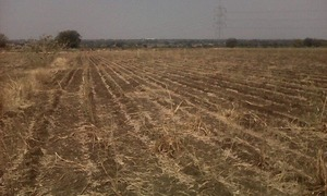 Two Acres of Land for Sale