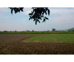 open land for sale near yadgir